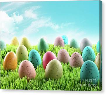 Colorful Easter Eggs In A Field Of Grass Canvas Print by Sandra Cunningham