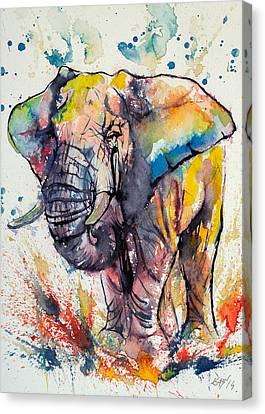 Colorful Elephant Canvas Print by Kovacs Anna Brigitta
