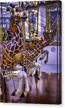 Colorful Giraffes Carrousel Canvas Print by Garry Gay