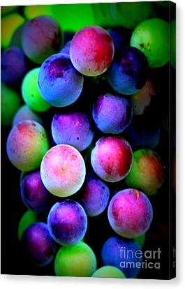 Colorful Grapes - Digital Art Canvas Print by Carol Groenen