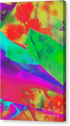 Colorful Canvas Print by Kathleen Struckle