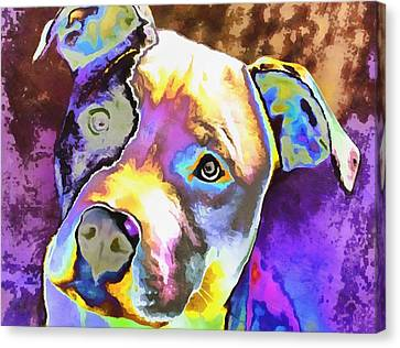 Colorful Pit Bull  Canvas Print by Dan Sproul