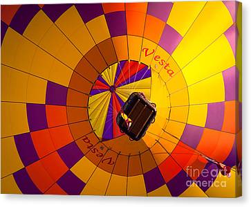 Colorful Underbelly Canvas Print by Inge Johnsson