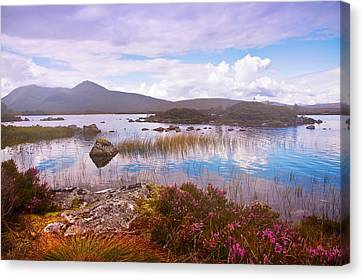 Colorful World Of Rannoch Moor. Scotland Canvas Print by Jenny Rainbow