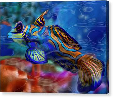 Colors Below 2 Canvas Print by Jack Zulli