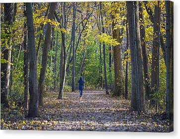 Come For A Walk Canvas Print by Sebastian Musial