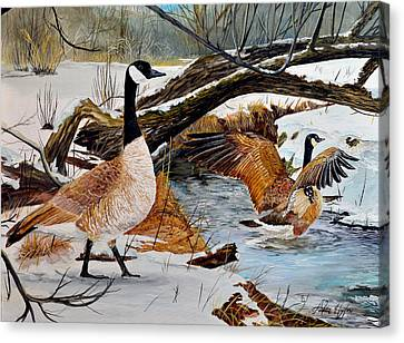 Come On In Its Not To Cold Canvas Print by Alvin Hepler