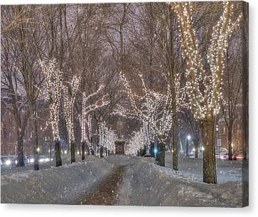 Commonwealth Ave Mall - Boston Canvas Print by Joann Vitali