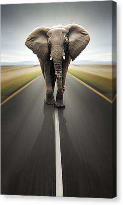 Heavy Duty Transport / Travel By Road Canvas Print by Johan Swanepoel