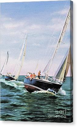 Conquistador Cup Canvas Print by Karol Wyckoff