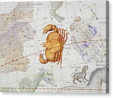 Constellation Of Cancer Canvas Print by Sir James Thornhill