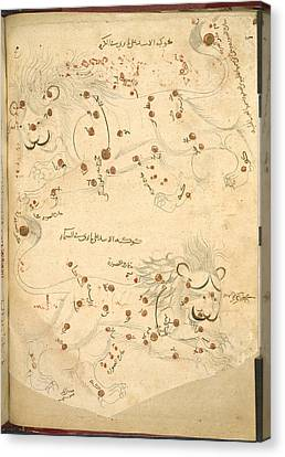 Constellation Of Leo Canvas Print by British Library