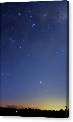 Constellation Of Scorpius Canvas Print by Luis Argerich