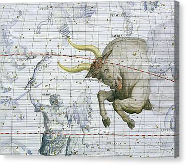 Constellation Of Taurus Canvas Print by Sir James Thornhill
