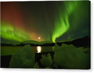 Convergence  Canvas Print by Ted Raynor