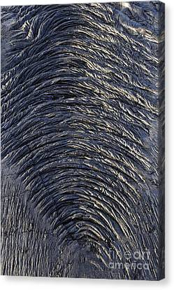 Cooled Pahoehoe Lava Wrinkles Canvas Print by Sami Sarkis