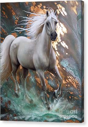 Copper Sundancer - Horse Canvas Print by Sandi Baker