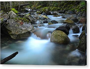 Coquihalla River 2 Canvas Print by Randy Giesbrecht