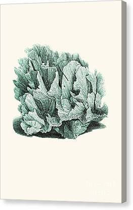 Coral Blue Canvas Print by Patruschka Hetterschij