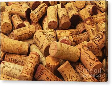 Corks Canvas Print by Stefano Senise