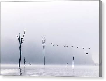 Cormorants Flying Over Water Canvas Print by K Jayaram