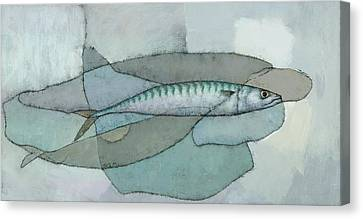 Cornish Mackerel Canvas Print by Steve Mitchell