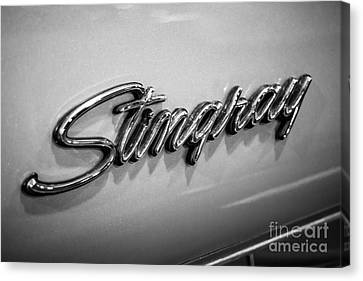 Corvette Stingray Emblem Black And White Picture Canvas Print by Paul Velgos