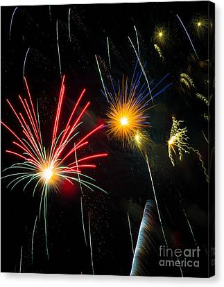 Cosmos Fireworks Canvas Print by Inge Johnsson
