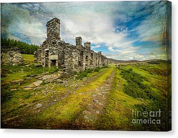 Cottage Ruins Canvas Print by Adrian Evans