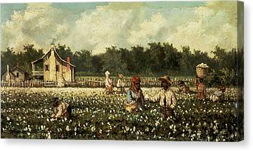 Cotton Field, Mississippi Oil On Panel Canvas Print by William Aiken Walker