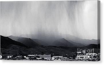 Cottonwood Rain Canvas Print by Arne Hansen