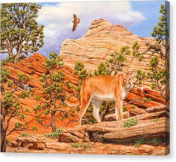Cougar - Don't Move Canvas Print by Crista Forest