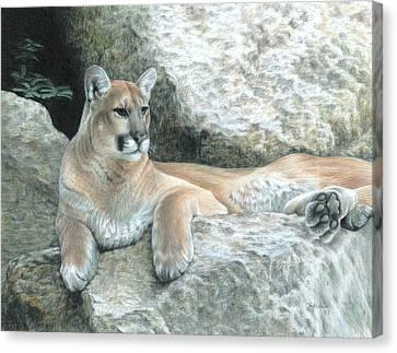 Cougar Haven Canvas Print by Carla Kurt