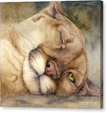 Cougar    I See You     Canvas Print by Bonnie Rinier