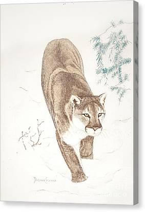 Cougar In Snow Canvas Print by Dag Sla