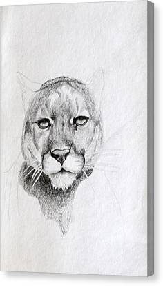 Cougar Canvas Print by Wade Clark