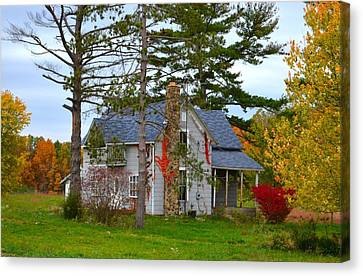 Country Cottage Canvas Print by Julie Dant