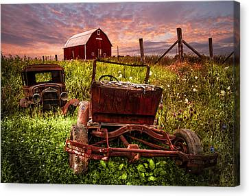 Country Cousins Canvas Print by Debra and Dave Vanderlaan