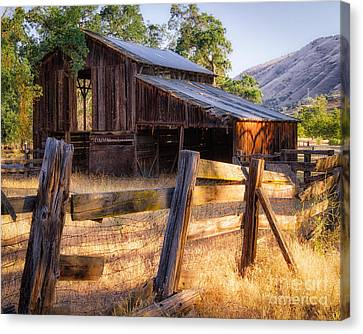 Country In The Foothills Canvas Print by Anthony Bonafede