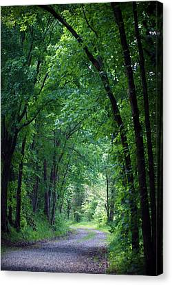 Country Lane Canvas Print by Cricket Hackmann