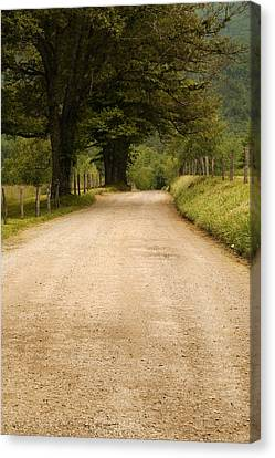 Country Lane - Smoky Mountains Canvas Print by Andrew Soundarajan