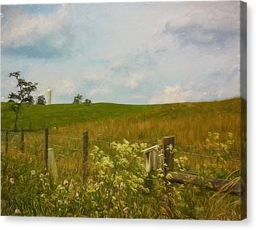 Country Meadow Canvas Print by Kim Hojnacki