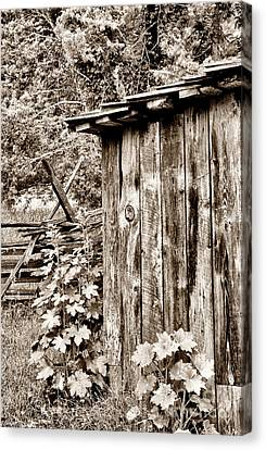 Country Outhouse Canvas Print by Paul W Faust -  Impressions of Light