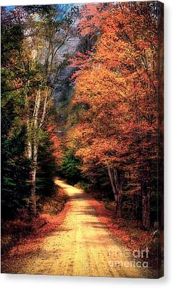 Country Road Canvas Print by Brenda Giasson