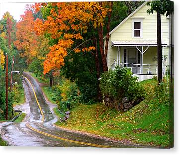 Country Road Canvas Print by George Cousins