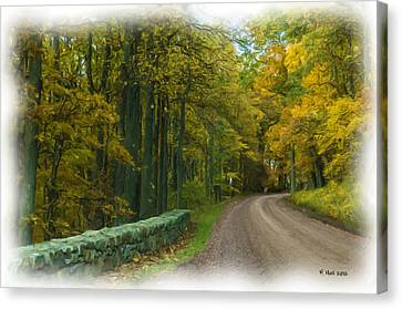 Country Road Canvas Print by Lisa and Norman  Hall