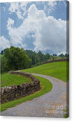 Country Road With Limestone Fence Canvas Print by Kay Pickens