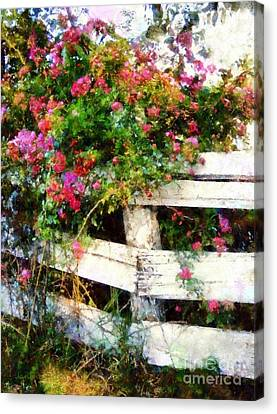 Country Rose On A Fence 3 Canvas Print by Janine Riley