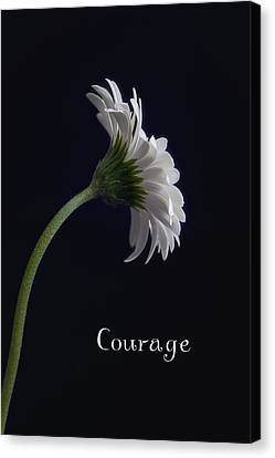 Courage Canvas Print by Kim Andelkovic