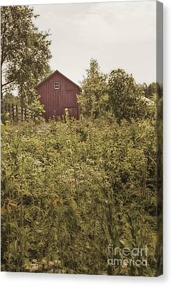 Covered Barn Canvas Print by Margie Hurwich